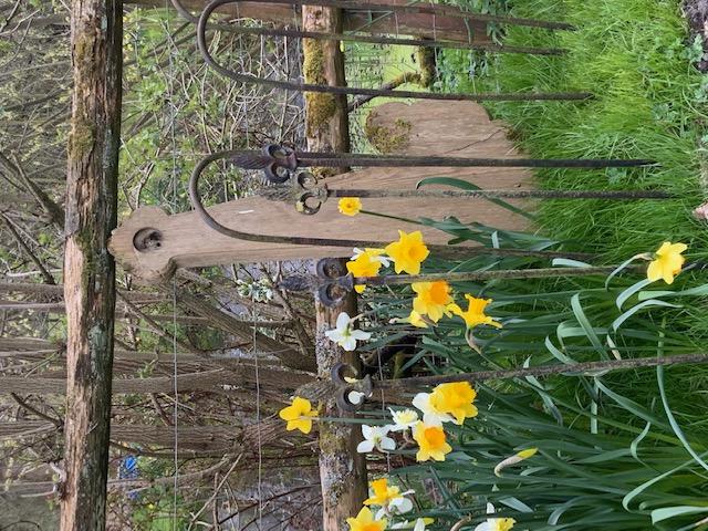 Church Fence